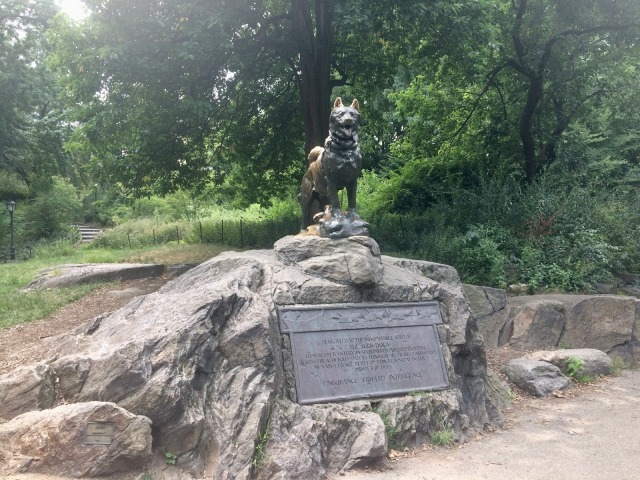 The Balto Statue in Central Park